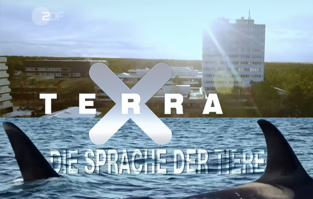 ZDF Terra-X - Die Sprache der Tiere